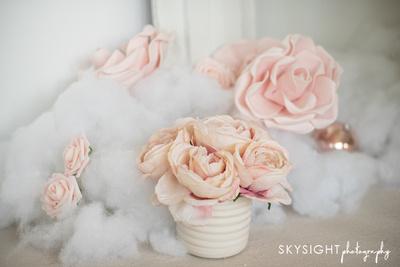 SKY_9508