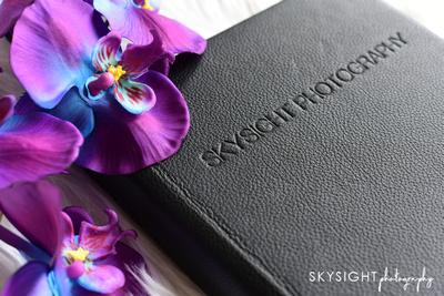 SKY_2529